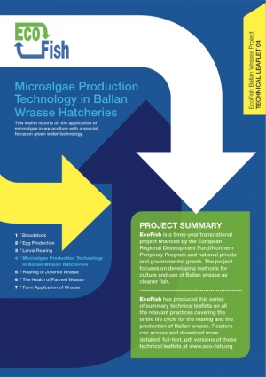 EcoFish Ballan Wrasse Project - Microalgae Production Technology in Ballan Wrasse Hatcheries