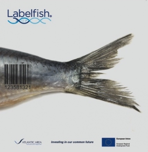 Labelfish Leaflet