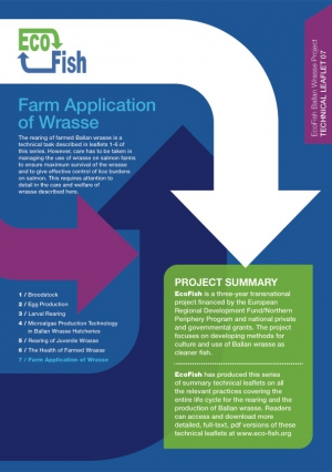 EcoFish Ballan Wrasse Project - Farm Application of Wrasse