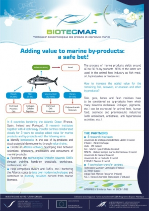 Adding Value to Marine By-Products: A Safe Bet!